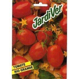 Tomate Rio Grande 10 gr