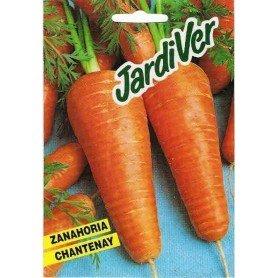 Zanahoria chantenay rex 25 g