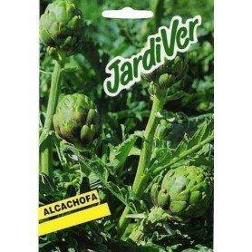 Alcachofa semillas s/p