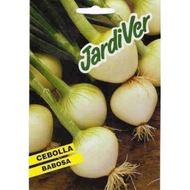 Cebolla babosa 10 gr