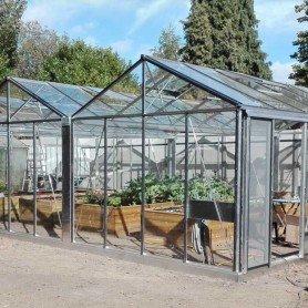 Invernadero cultivo clásica extension