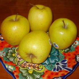 Apple me Yellow golden