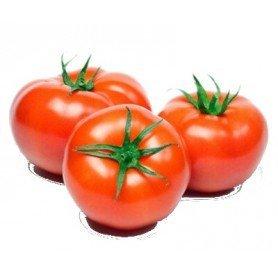 Plantero tomate tres cantos