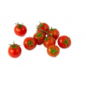 Plantero tomate Cherry