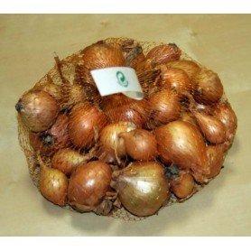 Chalotas ascalonia 350 gr