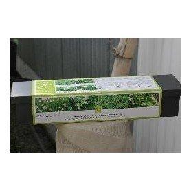 Set tematico jardinera hierbas de cocina