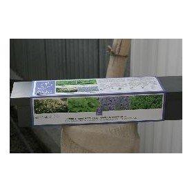 Set tematico jardinera con hierbas provenzales