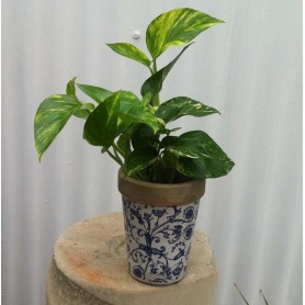 Florero redondo ceramica peque