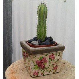Tiesto cuadrado ceramica peque rosas