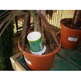 Aquaplant complet 135 ml caja