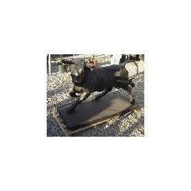 Toro hierro fundido 500 kg