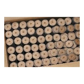 ROOT!T Pastillas de Turba Prensadas 36mm