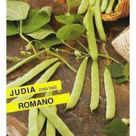 Judia Manteca de roquencourt. 250 gr