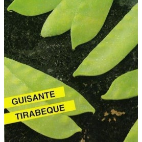 Guisante Tirabeque 250 gr