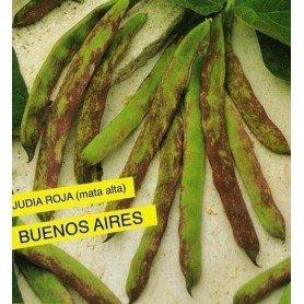 Judia Roja Buenos Aires 250 g