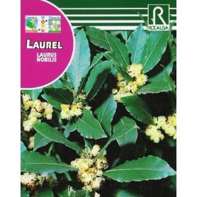 Semillas de Laurel 4 gr
