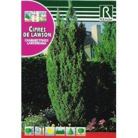 Semillas de Chamaecyparis lawsoniana 1 gr