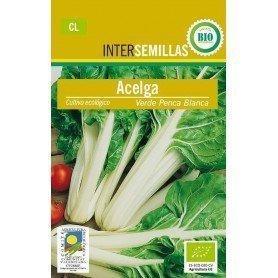 Semillas ecologicas acelga verde penca 6 g