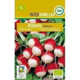 Semillas ecologicas rabano rojo
