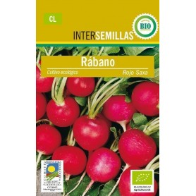 Semillas ecologicas rabano rojo saxa
