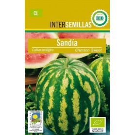 Semillas ecologicas sandia crimson sweet
