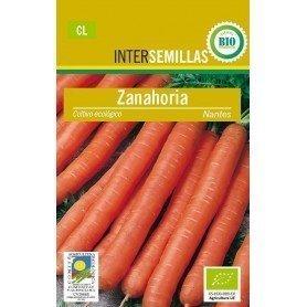 Semillas ecologicas zanahoria nantesa