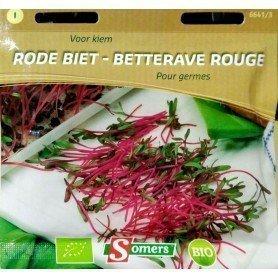 Semillas Bio brotes para germinar remolacha 25 gr