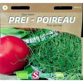 Semillas Bio brotes para germinar puerro 10 gr