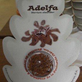 Semillas de Adelfa