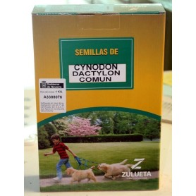 Semillas de Cynodium dactilum 1 kg