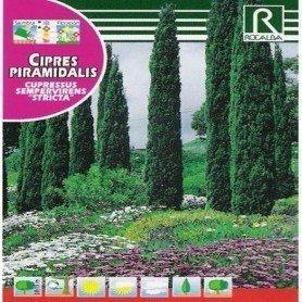 Semillas de Cipres piramidalis 2 gr