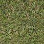Agrostis tennuis highland 1 kg