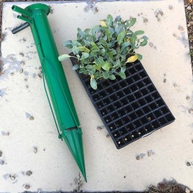 Plantadora hortalizas doble mango