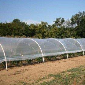 Plastico natural para tunelillos 1.50x25 m 300 gg