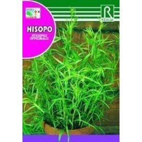 Semillas de Hisopo