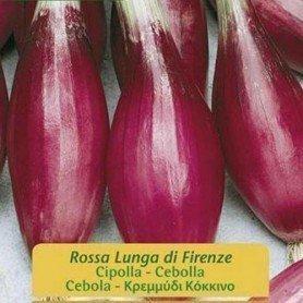 Cebolla rosa lunga de Florencia 5 g
