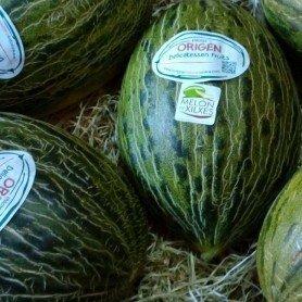 Melon Piel de Sapo 20 g