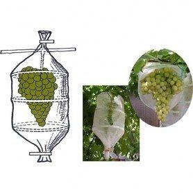 Bolsa protectora para uvas 20x60 5 ud