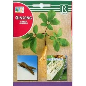 Semillas de Ginseng