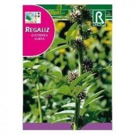 Regaliz Glycyrrhiza Glabra en semilla