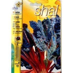 Acelga Roja Rhubarb chard 8 gr