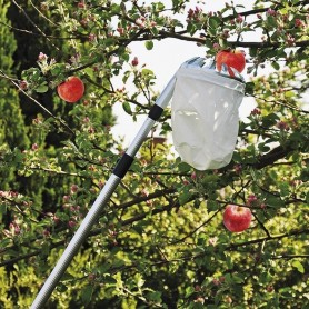 Recoge frutas telescopico
