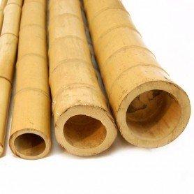 Tutor de bambú para decoración