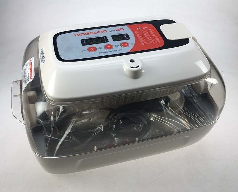 Incubadora R-com suro digital
