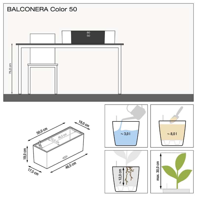BALCONERA color