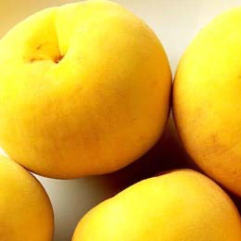 Peach me Yellow Romea C-1 litro