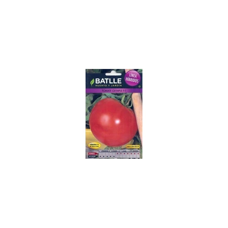 Tomate Olimpe F1 0,11 g
